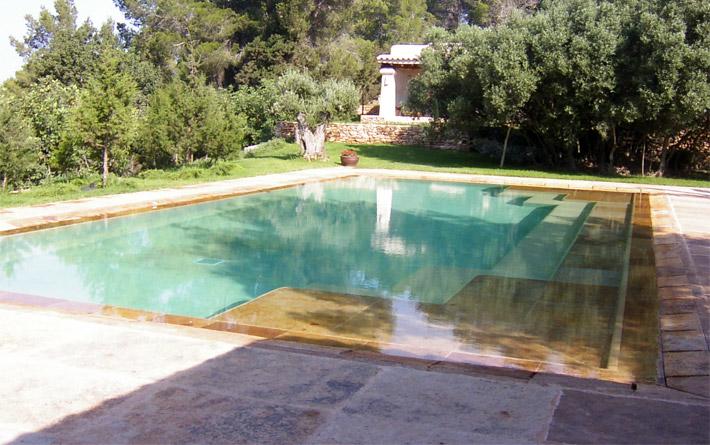 Picinas foto piscinas lanex como iniciar su negocio de for Piscina delfin madrid